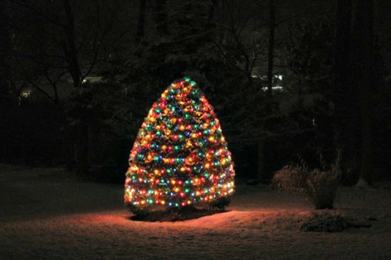 outdoor-christmas-tree-2012